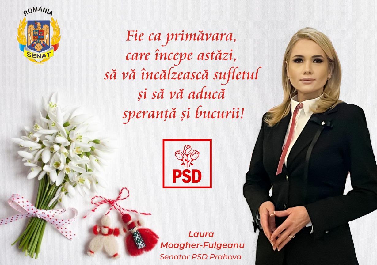 Laura Fulgeanu-Moagher martie 2021