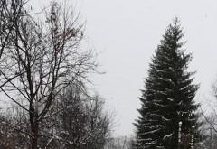 Consiliul Judetean a actionat exemplar la prima ninsoare. De data asta n-am mai fost luati prin surprindere...