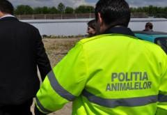 IJP Prahova face angajari pentru Politia Animalelor, noul departament infiintat de M.A.I