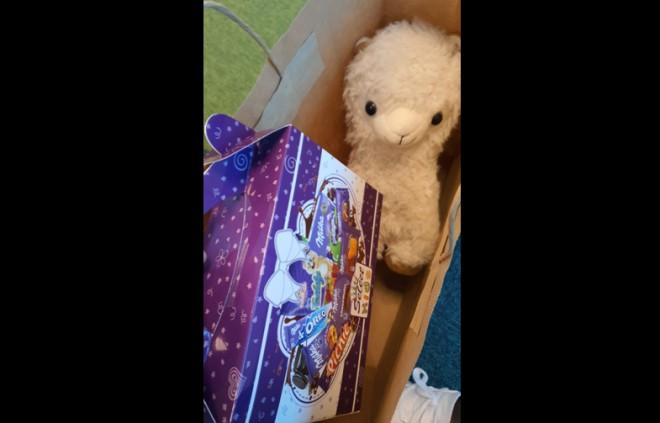 Surpriza pentru 55 de copii internati la Pediatrie Ploiesti, Primarul Volosevici le-a pregatit pachete cadou si un spectacol de teatru