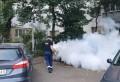 Soluția primarului Volosevici de a scăpa de țânțari: Dezinsecție și în curțile ploieștenilor