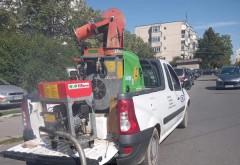 Primaria Ploiesti anunta ca a inceput dezinsectia in canalizarile din municipiu