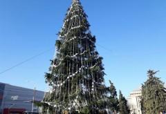 SGU a început împodobirea bradului de Crăciun din Ploieşti