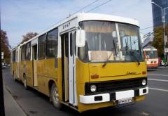 Anunţ pentru ploieşteni! Două trasee de autobuz, repuse in circulatie
