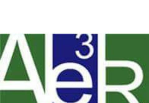 Cele mai importante subiecte dezbatute la AE3R