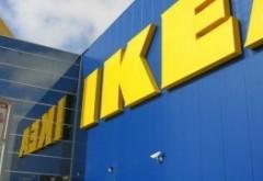 Ikea pune stăpânire pe pădurile României: A mai luat 13.000 de hectare