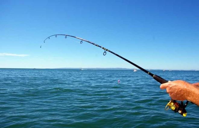 De la pescar la miliardar. Cum a transformat o sancţiune impusă ţării sale într-o avere de 1 miliard de dolari