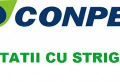 CONPET organizează licitatii cu strigare pentru instrainarea unor conducte si tronsoane de conducta ingropata