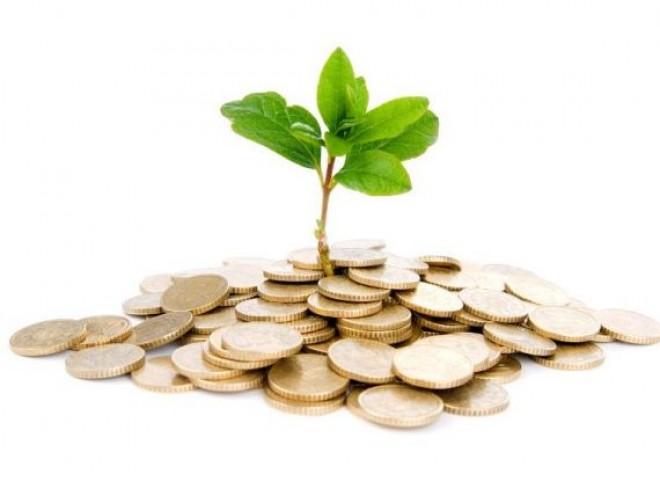 5 idei de afaceri pe care le poţi deschide RAPID fără bani proprii