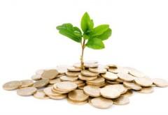 Afaceri pe care le poţi porni cu mai puţin de 500 de lei: astăzi, un business pe care il poţi face din vârful patului