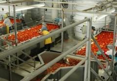 Bani de la AFIR pentru investiţii în procesarea produselor agricole şi pomicole. De AZI se depun proiectele