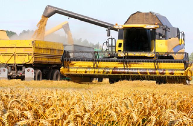 Comerţul cu cereale a crescut de trei ori în ultimii zece ani