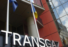 Doua companii din Ploiesti au castigat licitatia Transgaz pentru executia conductei BRUA
