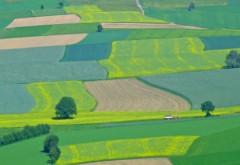 Tranzacţia cu pământ a anului: o familie de români a cumpărat aproximativ 400 de hectare