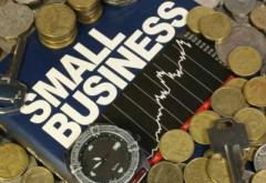 Microîntreprinderile pot să opteze pentru plata impozitului pe profit, în anumite condiții