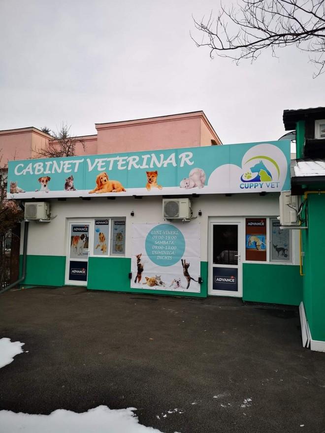 Ploiesti/ Cabinetul veterinar Cuppyvet angajeaza medic veterinar si tehnicieni/asistenti