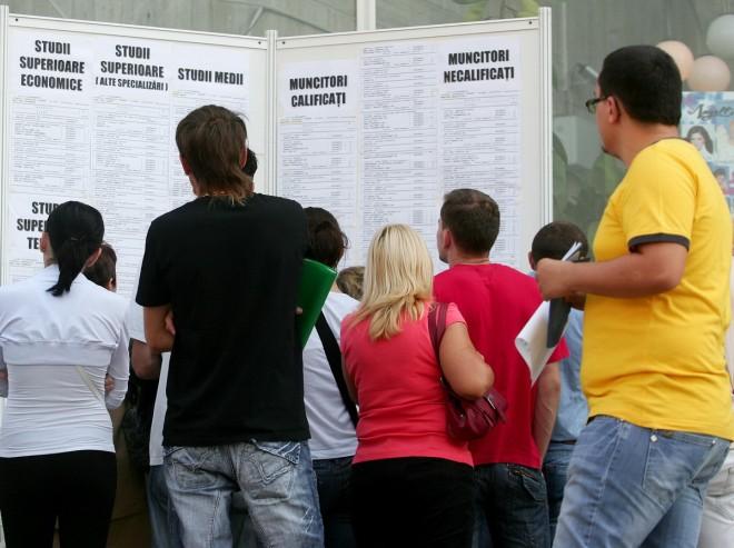 Aproape 1.3000 de locuri de muncă VACANTE în Prahova