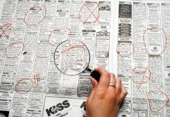 Peste 150 de locuri de muncă vacante în Vălenii de Munte