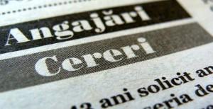 Zara, Praktiker si LIDL fac angajari in Ploiesti. Vezi lista completa a locurilor de munca disponibile