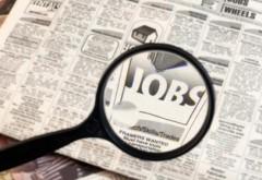 Peste 180 de locuri de muncă în Vălenii de Munte