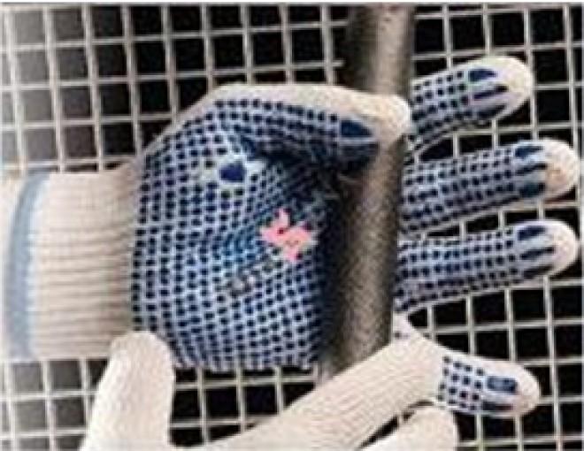 Siguranta la indemana oricui: Unde gasesti echipamente de protectie la cele mai bune preturi de pe piata