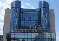 Forum de afaceri româno-chinez la Ploieşti