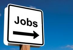 Locuri din muncă în ţările din UE. Vezi aici oferta