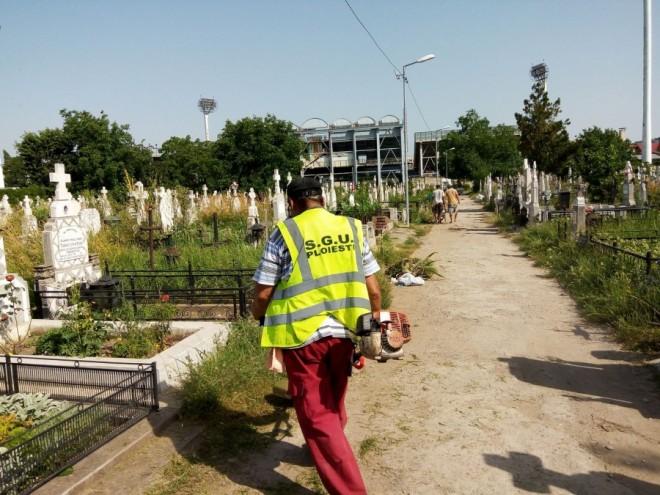 SGU Ploiesti angajează 50 de oameni la spatii verzi