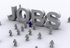 Angajări pe salarii de la 700 euro lunar în străinătate