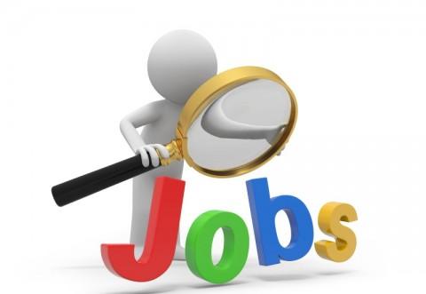 Peste 700 de locuri de muncă, disponibile în Prahova. Hoteluri, firme şi instituţii publice fac angajări