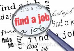 7.650 de anunţuri de angajare la început de an. Ofertele pentru munca în străinătate