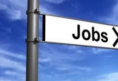 Peste 1.100 de locuri de muncă vacante, în Prahova. Ce companii fac angajări
