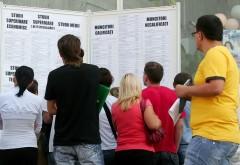 Aproape 1.200 de locuri de muncă vacante, în Prahova. LISTA COMPLETĂ