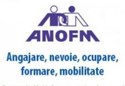 ANOFM: Peste 24.800 de locuri de muncă vacante