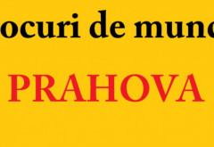Locuri de munca Prahova/ 1.951 de  joburi disponibile in intreg judetul