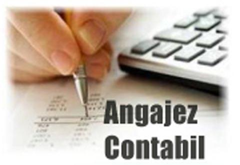 ANGAJARI in Prahova: SC Terra Strade angajeaza CONTABILA (contabilitate primara), salariu motivant, masina de serviciu