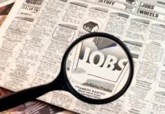 Aproape 31.000 de locuri de muncă vacante la nivel național; cele mai multe sunt în București, Prahova, Sibiu, Arad și Cluj
