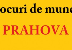 Locuri de munca in Ploiesti, Campina, Mizil si Valea Prahovei