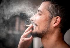 Consumul de canabis nu a crescut în statele care l-au legalizat