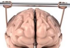 Substanțe nutritive care amplifică capacitățile creierului. Ce nu vrea industria farmaceutică să se știe?