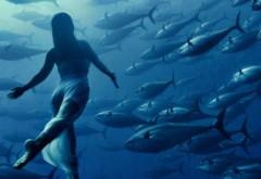 DESCOPERIRE UIMITOARE: Vom putea respira sub apă, nelimitat, cu ajutorul unui cristal!