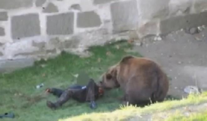 Un barbat din Brebu a fost muscat de urs