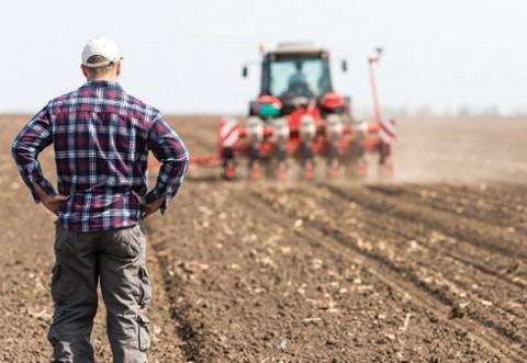 Incepând de astăzi, fermierii vor primi în avans subvenţiile pentru efectuarea lucrărilor agricole de toamnă