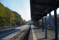 O femeie a murit dupa ce a fost lovita de tren in Halta Sinaia