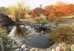 De vizitat: Gradina botanica din Bucov, un loc linistitor, cu peisaje superbe de toamna