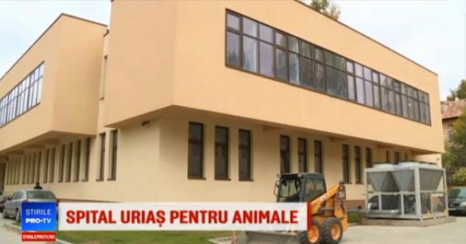 Cel mai mare si modern spital veterinar din Sud-Estul Europei se construieste langa Ploiesti! Investitia, 5 MILIOANE de euro