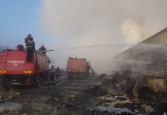 Incendiul din Mimiu nu a fost stins nici acum, dupa 24 de ore! Există temeri că în depozit se află şi substanţe toxice extrem de periculoase