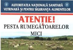 In atentia proprietarilor de capre, oi si pasari de curte! Mesaj IMPORTANT de la Primaria Ploiesti