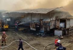 Incendiu puternic la o ferma din Mizil. Au ars peste 150 de porci si 100 de vaci