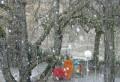 Ninge in Ploiesti. Prahova a intrat sub cod galben de ninsori si vant puternic